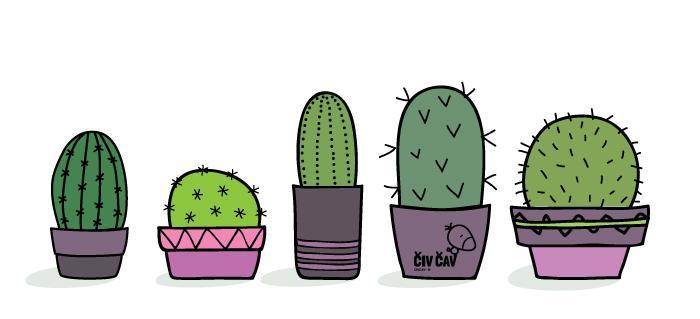 Kreativne-ideje-kamencki-kaktusi-civcav