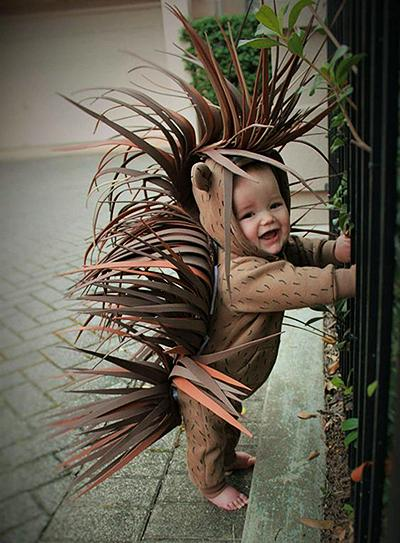 Pustni kostumi - ježevec - civcav.si