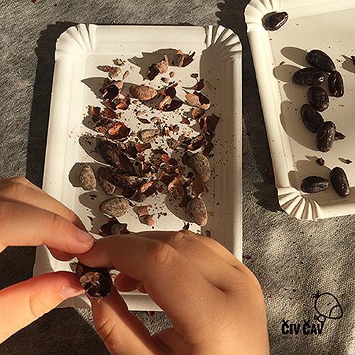 Kako naredimo čokolado - lupljenje kakavovih zrnc